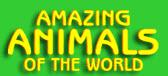 Image result for amazing animals of the world database